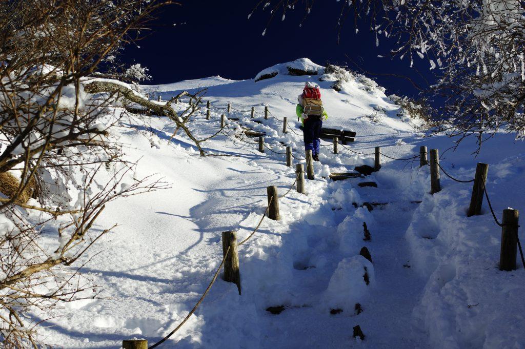 塔ノ岳山頂への最後の登り