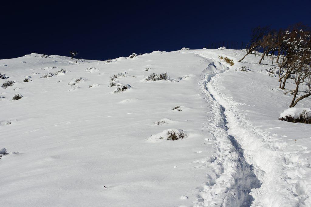 丹沢山から不動ノ峰に続く稜線