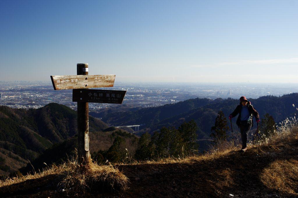 景信山から都心方面の眺め