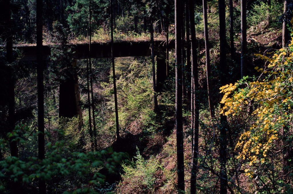 小河内ダムと奥多摩駅を結ぶ路線の陸橋