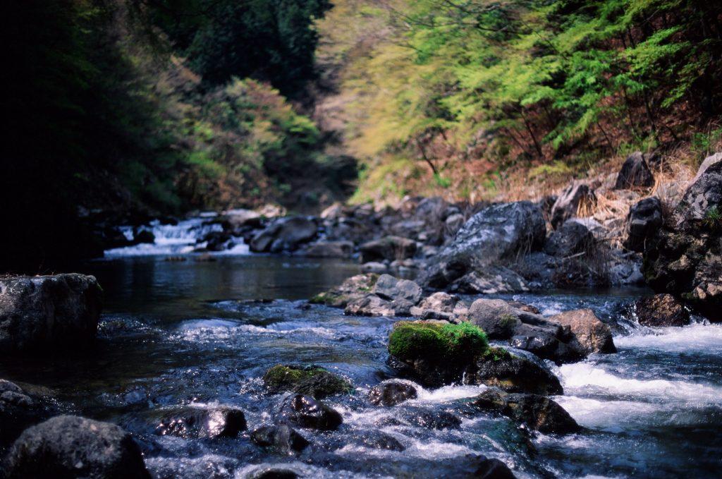 しだくら吊橋付近の河原